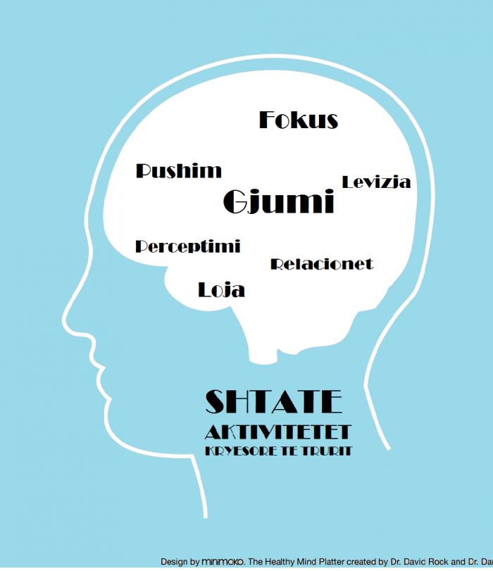Shtatë funksionet kryesore të trurit