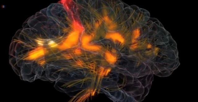 funksionon truri