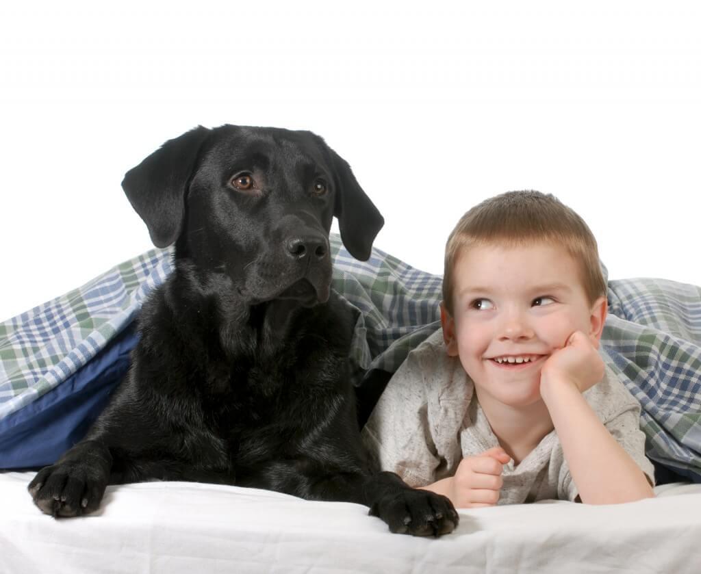 Fëmijët dhe kafshët shtëpiake, një dashuri e sinqertë