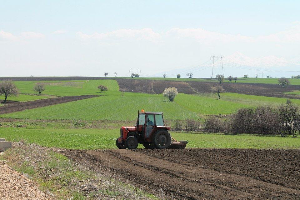 Marka shqiptare do të rrisë konkurueshmërinë e bujqësisë