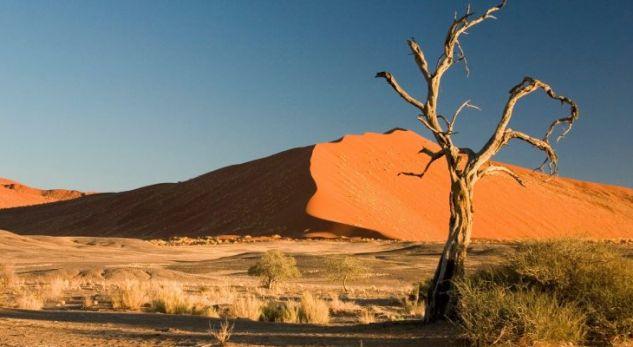 Pse njerëzit e braktisën Afrikën 60 mijë vjet më parë