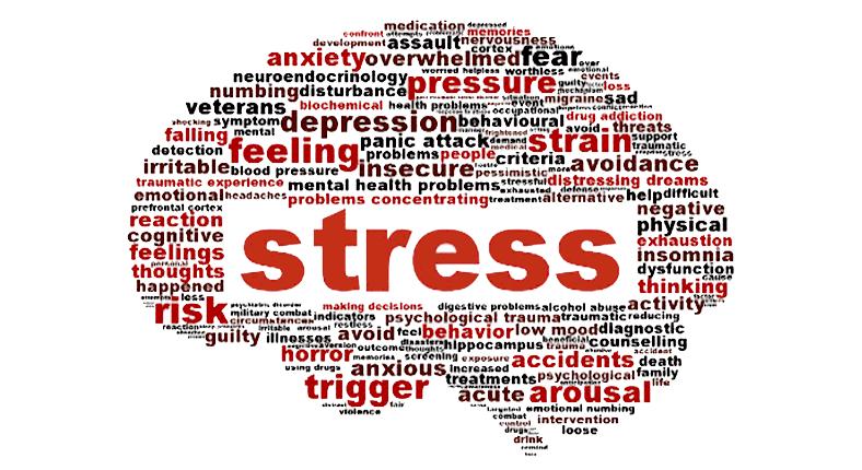 Si ndikon stresi në tru dhe në zemër