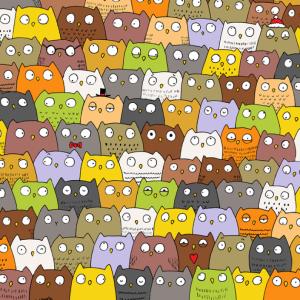 mund ta gjeni macen