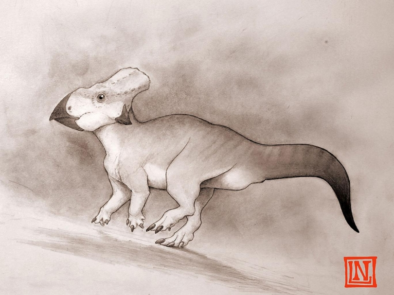 Fosili 100 milionë vjeçar i dinozaurit