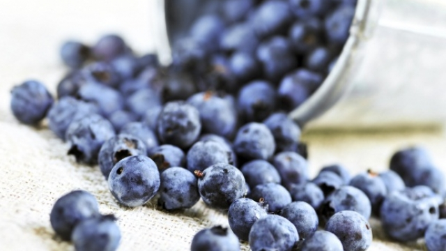 Pse boronicat janë të mira për shëndetin