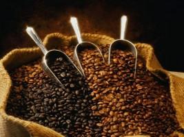 Importi i kafes është rritur me 20%