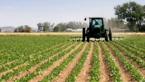 Mbi 12 mijë fermerë përfitues të mbështetjes financiare
