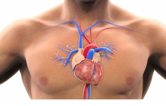 Arteriet e bllokuara, 4 shenjat që duhet t'ju shqetësojnë