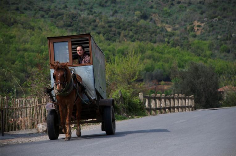 Karroca me kalë përplas për vdekje të moshuarën në Devoll