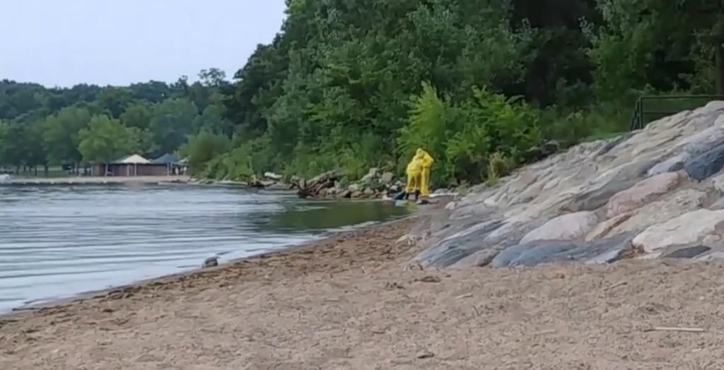Kapet në liqen krijesa misterioze, gjysmë njeri dhe gjysmë peshk