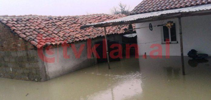 Pastronte shtëpinë nga përmbytjet, pickohet nga gjarpri /Foto