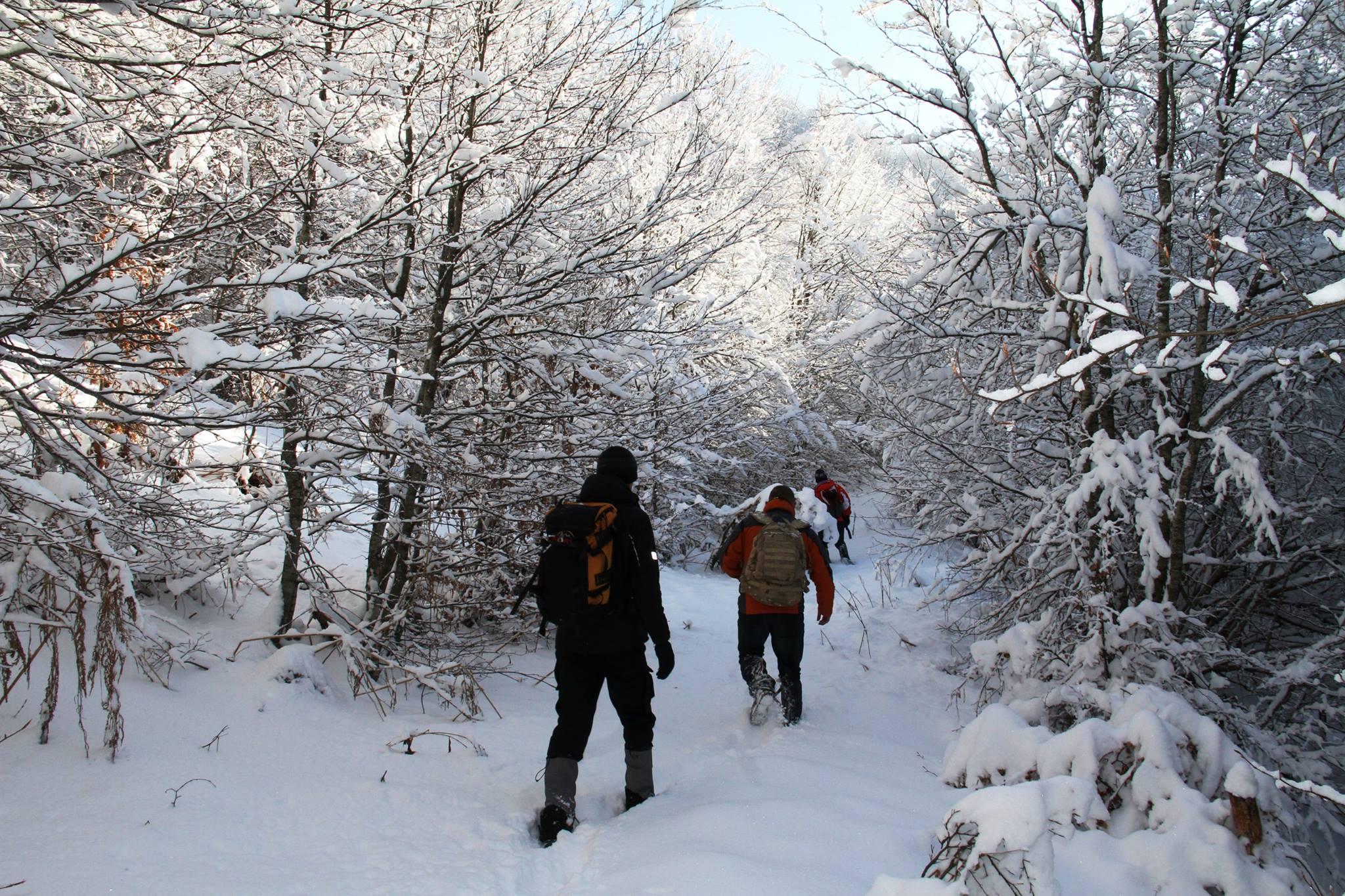 Bllokohen shtatë persona në Dajt për shkak të borës