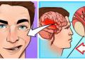 Ja mënyra si mund ta shpëtoni jetën e ndonjë njeriu që pëson goditje në tru