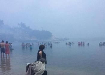 Pamje apokaliptike në Greqi, njerëzit vrapojnë drejt ujit për të shpëtuar nga zjarri (FOTO)