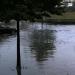 """Pasdite me shi në Durrës, makinat """"notojnë"""" (FOTO)"""