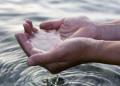 Zbulohet arsyeja se pse uji i detit është i mirë për shëndetin