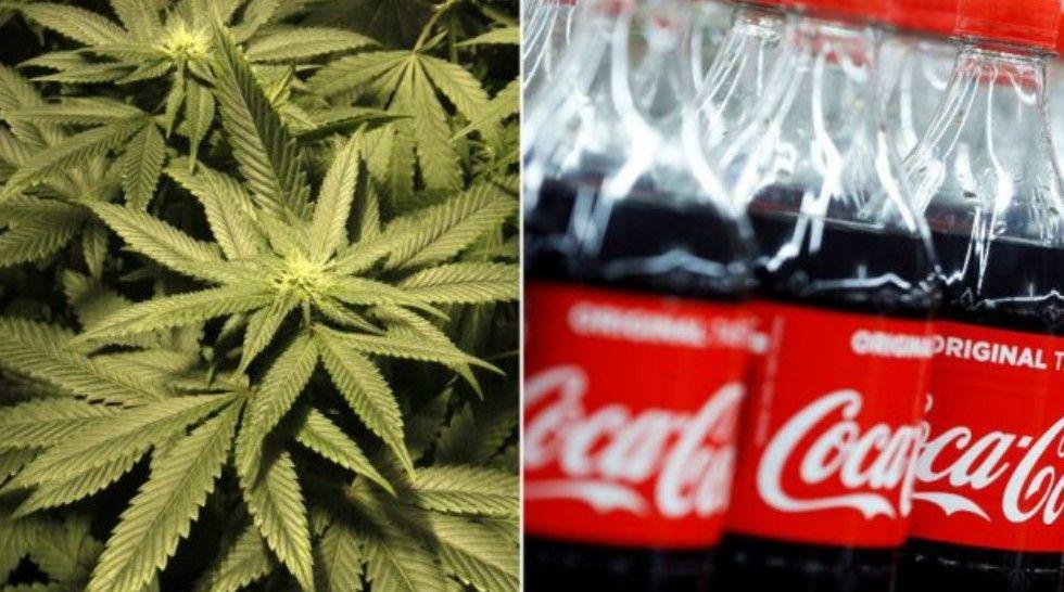 Coca Cola po studion pijen e re me kanabis