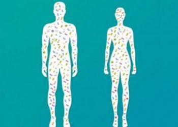 7 organet pa të cilat mund të jetojmë normalisht
