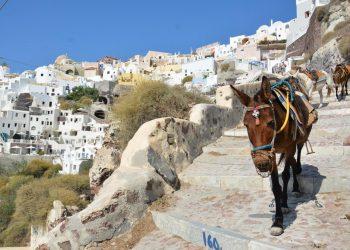 Greqi, ligj kundër turistëve që peshojnë mbi 100 kg