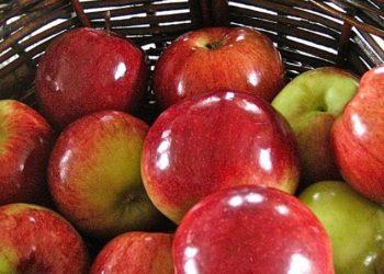 Sa më shumë të shkëlqejë molla, aq më shumë dyll ka, si t'i pastroni nga toksinat
