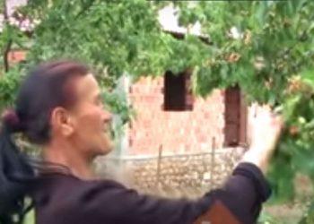 Njihuni me fshatin në Librazhd ku nuk përdoret leku për tregti (VIDEO)