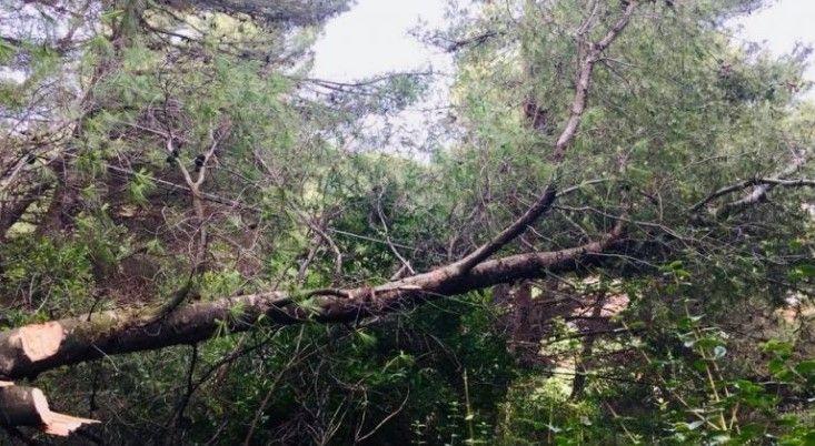 Edhe Shqipëria goditet nga stuhi të fuqishme (VIDEO)