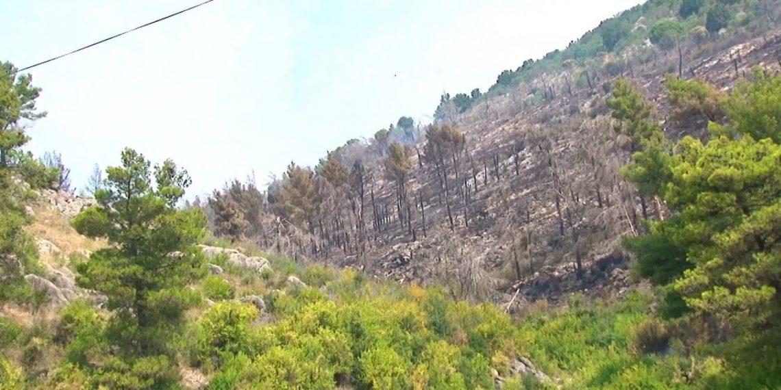 Mali i Shëngjinit i shkrumbuar, ja si paraqitet situata