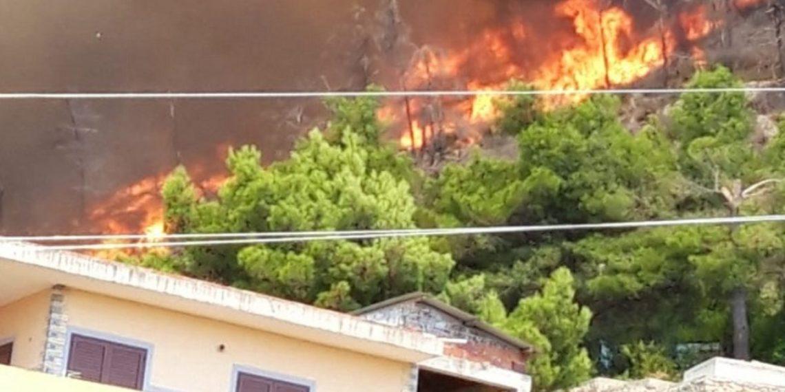 Panik nga zjarri në Malin e Shëngjinit, flakët afër banesave (VIDEO)