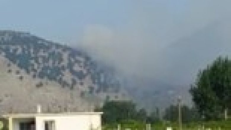 Zjarr te Maja e Zezë në Velipojë, përhapja e flakëve rrezikon edhe disa banesa (VIDEO)