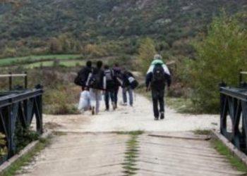 Tentuan të kalonin kufirin ilegalisht, ndalohen 7 sirianë në Dibër