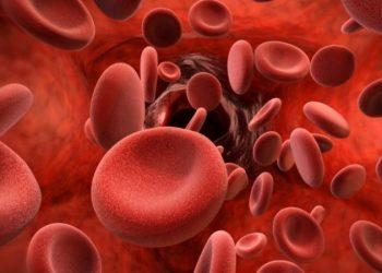 A e dini se kjo pjesë e trupit të njeriut nuk ka nevojë për gjak (FOTO)