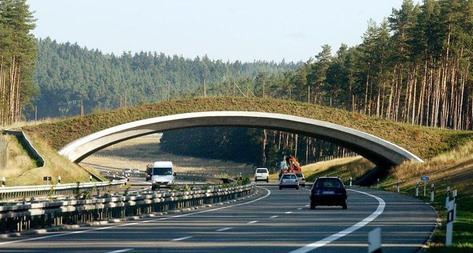 Përse hyjnë në punë? Ura të gjelbra mbi autostradat në Gjermani (FOTO)