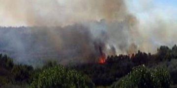 Rikthehen zjarret në Shqipëri! Flakët përfshijnë një sipërfaqe toke në Ksamil